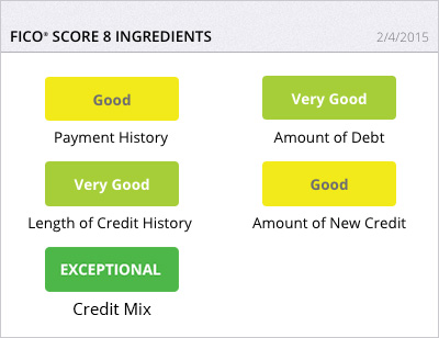 FICO® Score 8 Ingredients – FICO® Score 1B Report
